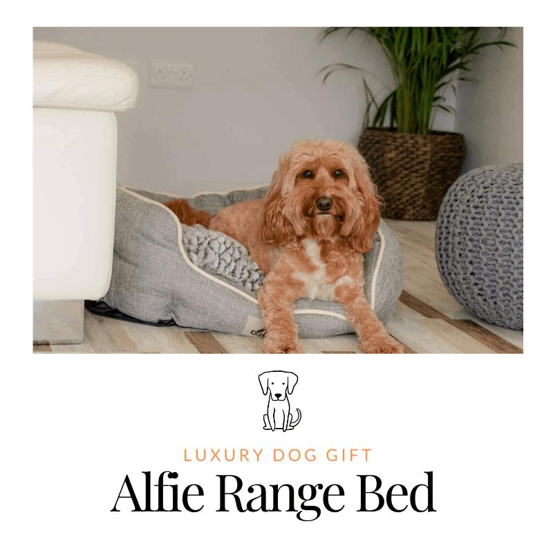 Alfie Range Bed Review