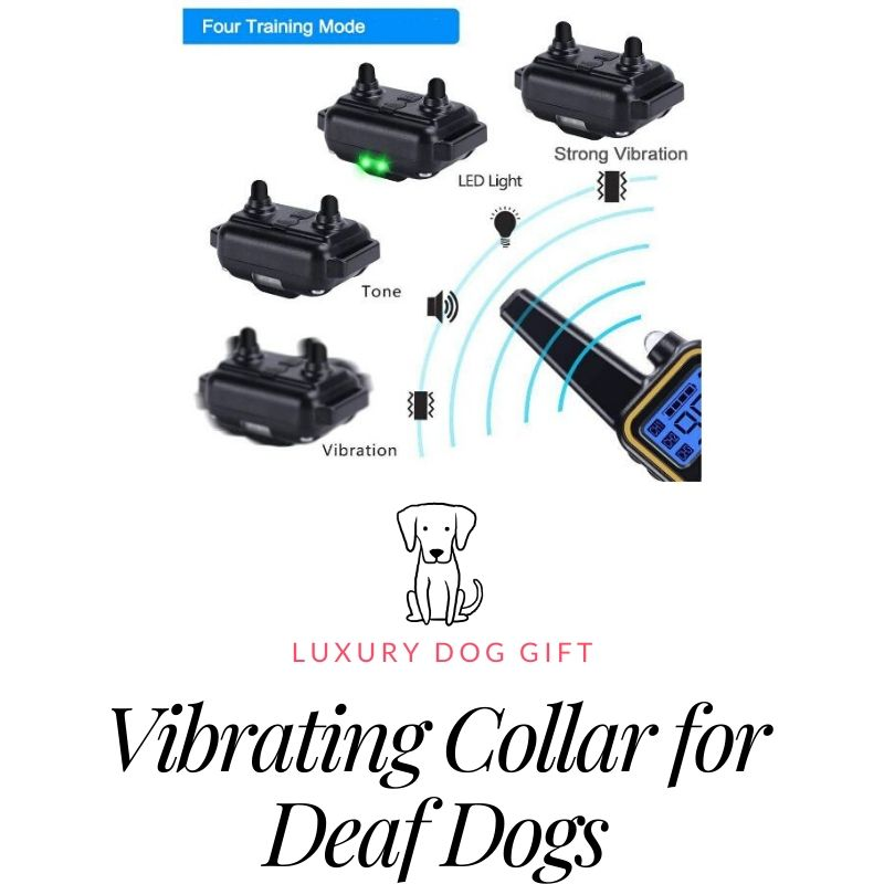 Best vibrating collar for deaf dogs