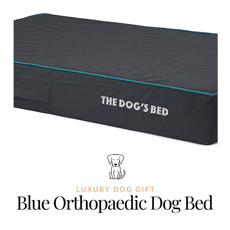 luxury Blue Orthopaedic Dog Bed Review