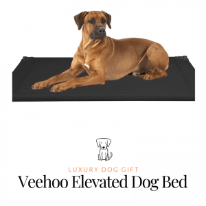 Veehoo Elevated Dog Bed Review