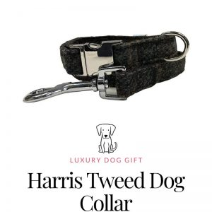Harris Tweed Dog Collar