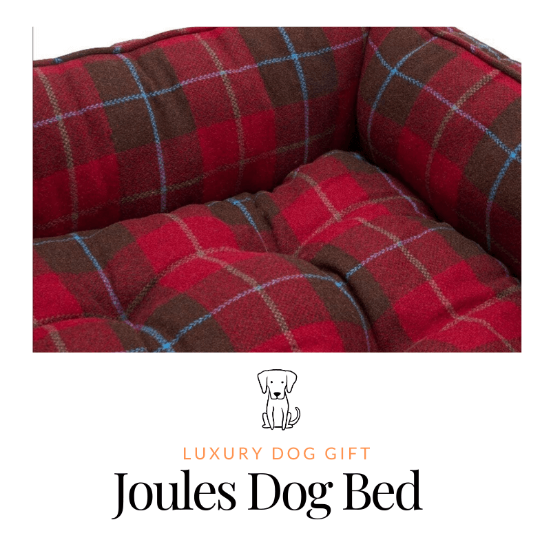 Joules Dog Bed Review