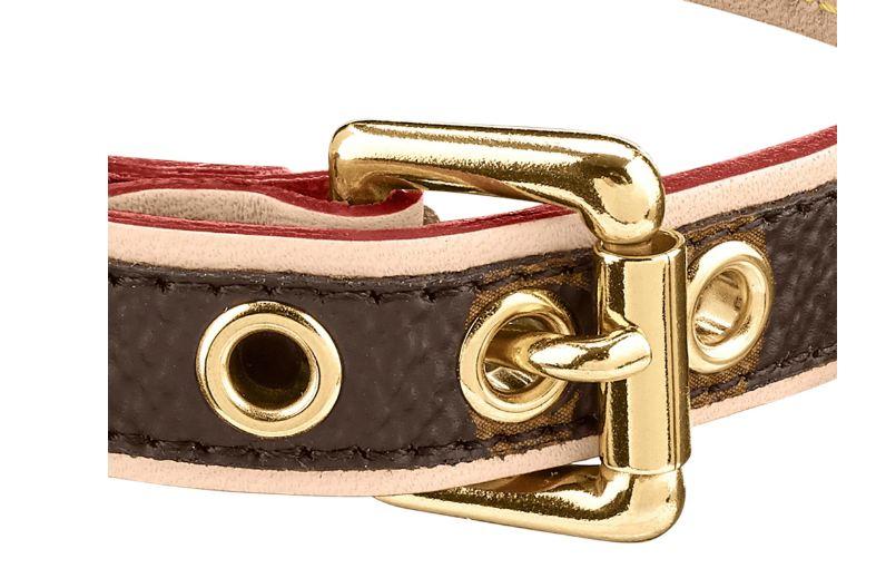 Louis Vuitton Dog Collar Review