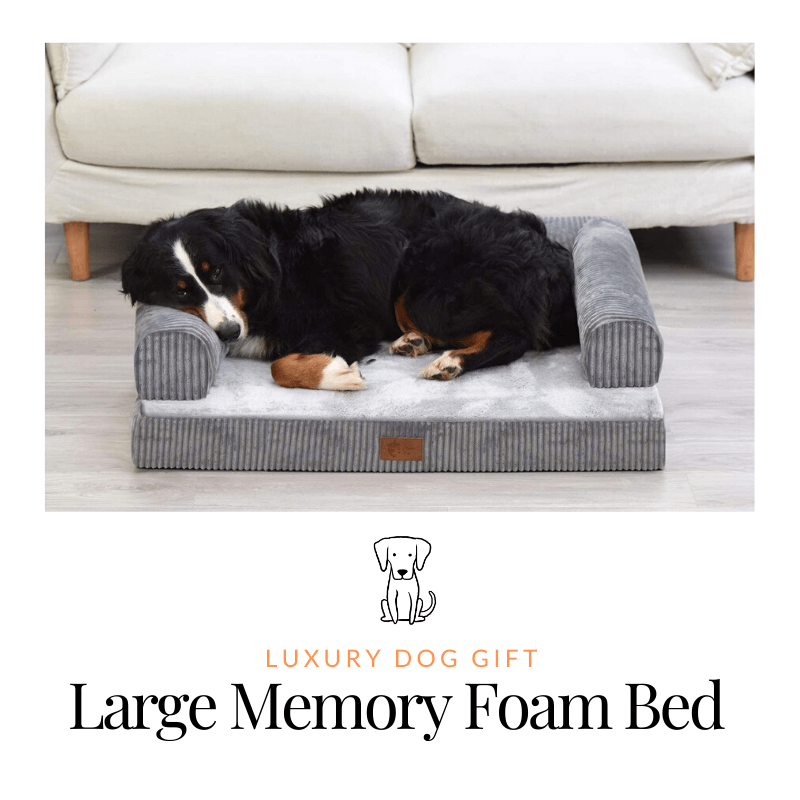 Memory Foam Large Dog Bed review