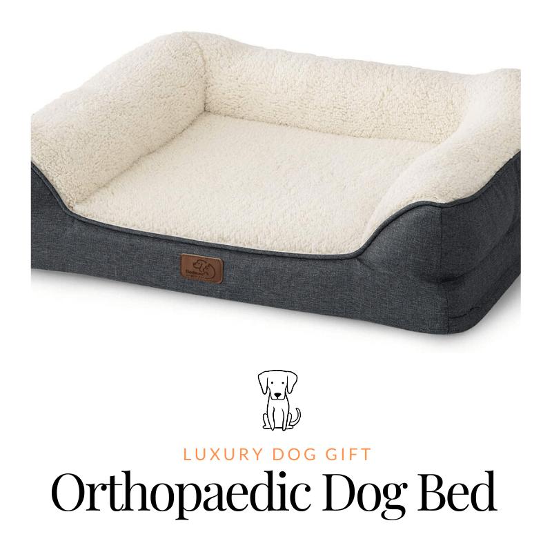 Orthopaedic Dog Bed Reviews
