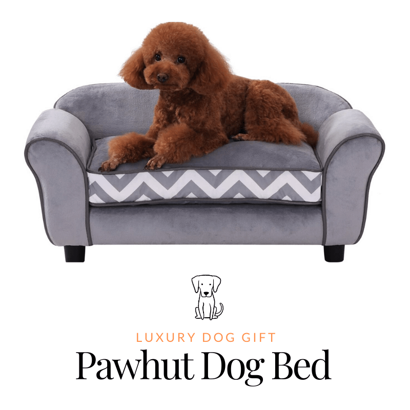 Pawhut Dog Bed Review