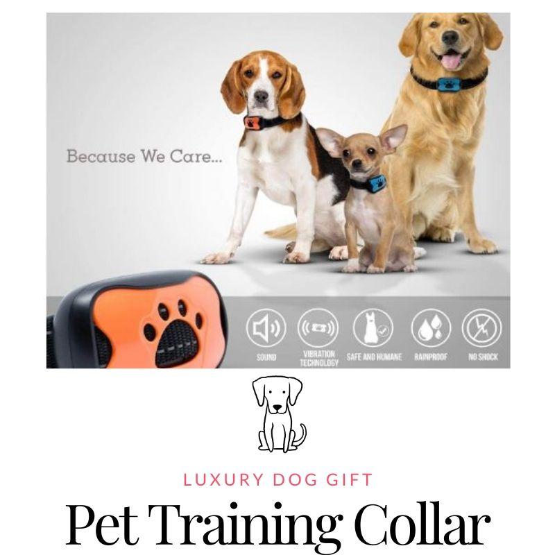 Petic Anti-Bark Collar