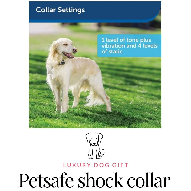 Petsafe Stubborn Dog Receiver Collar