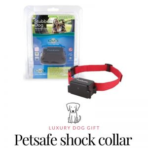 Petsafe shock collar Review