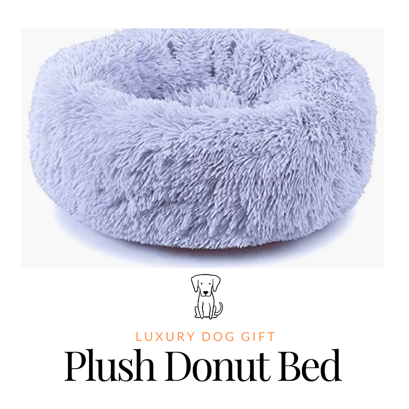 Plush Donut Dog Bed Review