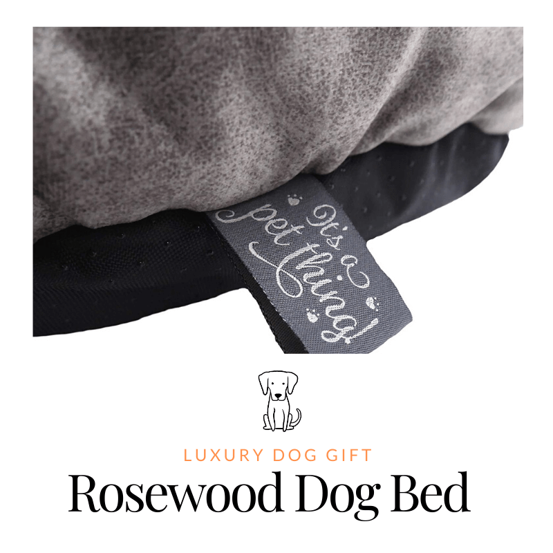 Rosewood Dog Bed Review