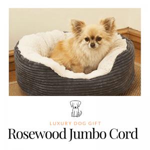 Rosewood Jumbo Cord Review