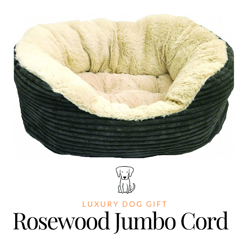 Rosewood Jumbo Cord Review