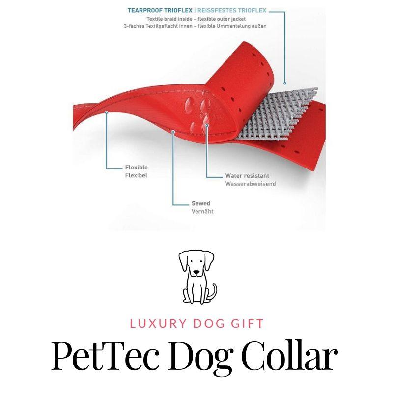 pet tech dog collar