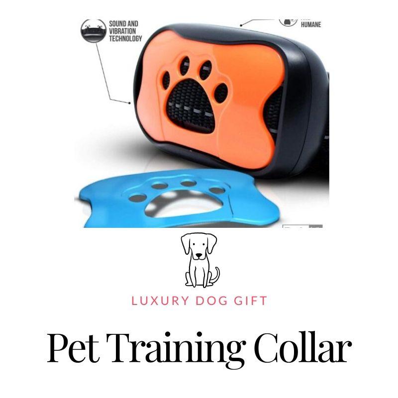 pet training collar