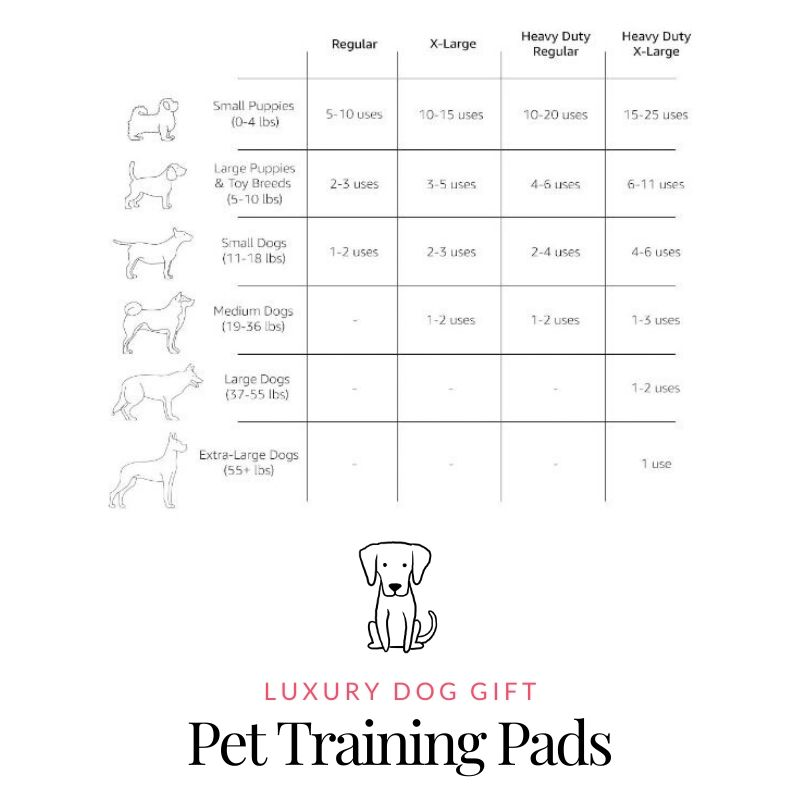 Picture of AmazonBasics Pet Training Pads Review