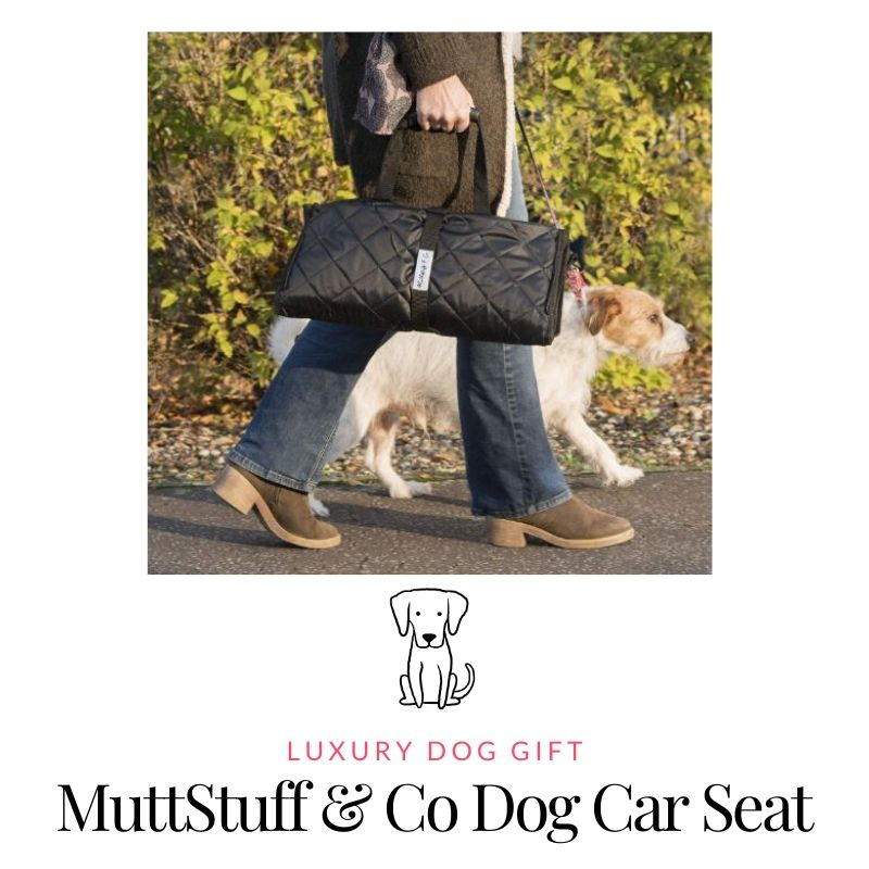 Picture Of Best Dog Car seat Review