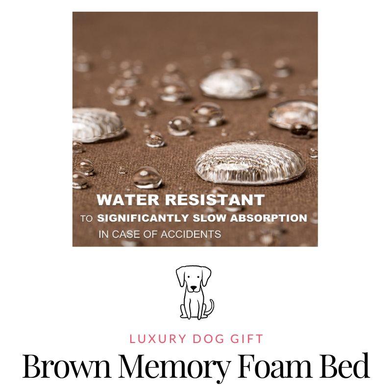 Brown memory foam bed Review