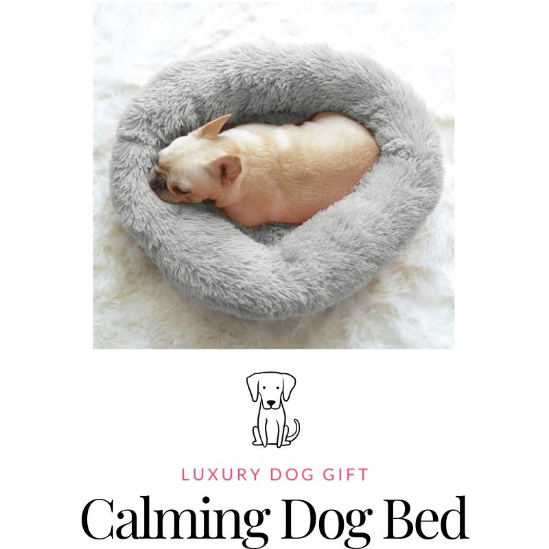 Calming Dog Bed Review