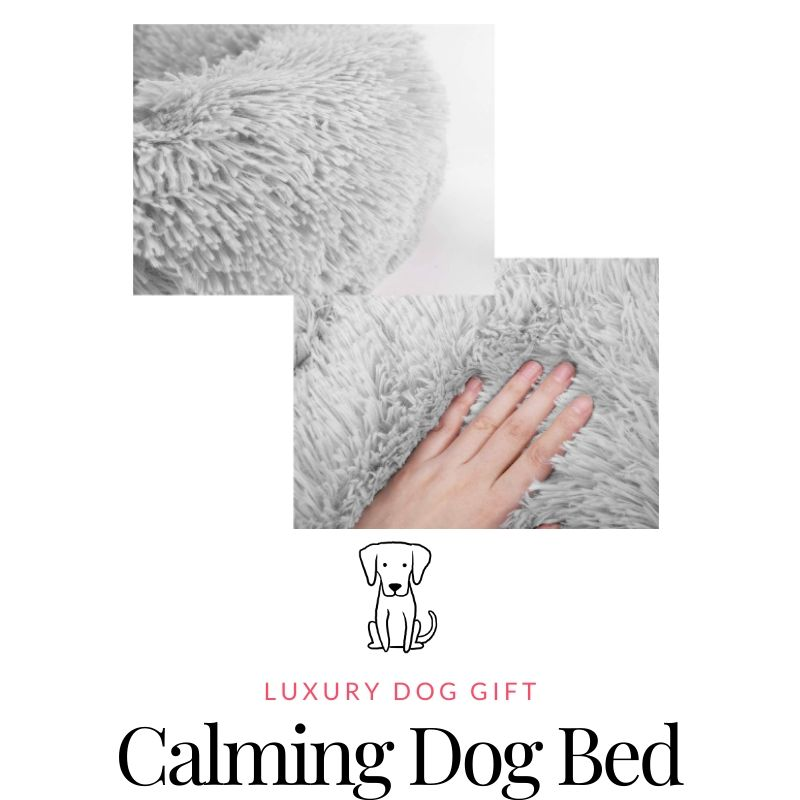 Lontg Plush Dog Bed Review
