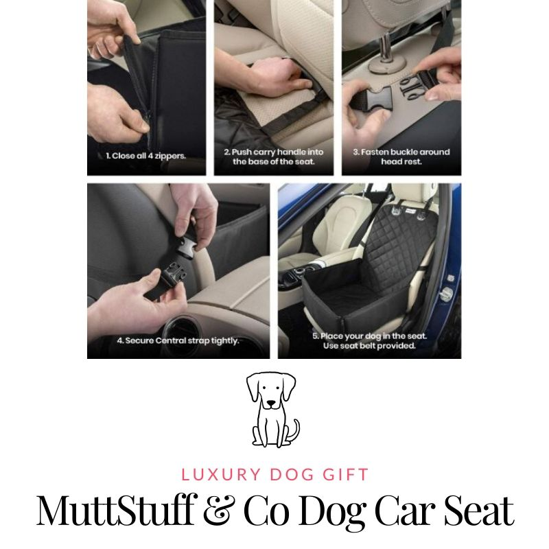 Picture Of MuttStuff & Co Car Seat for Dog