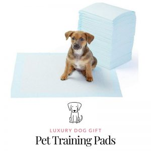 Picture of Pet Training Pads