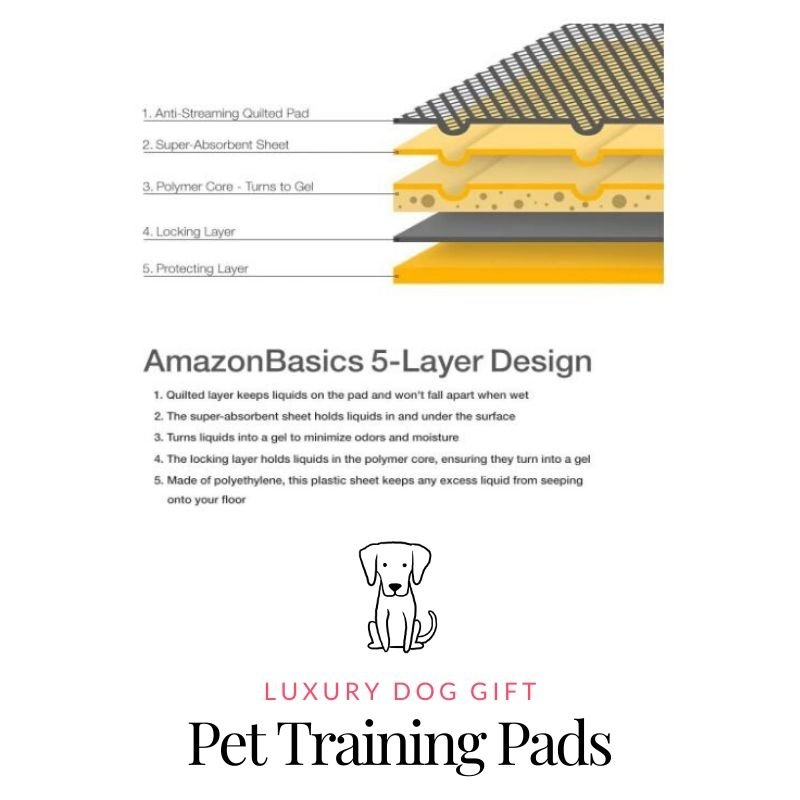 Picture of Pet Training Pads Review