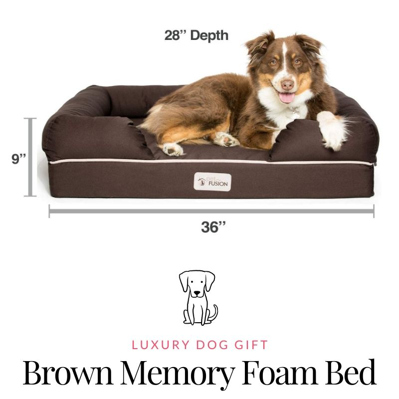 PetFusion Ultimate Dog Bed Review