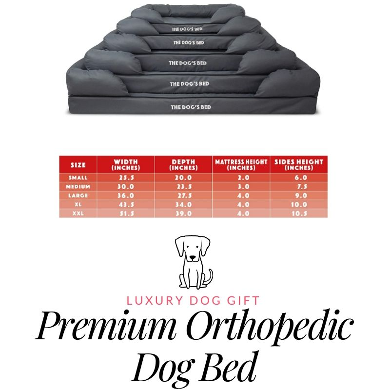 orthopedic dog bed review